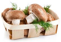 高清木框里的香菇蔬菜图片素材