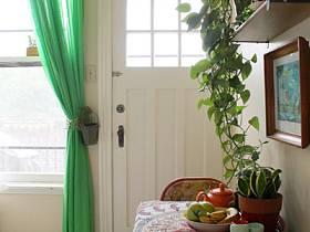 餐厅植物餐桌餐桌布设计图