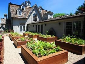 外景别墅植物案例展示