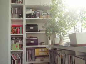 书房阳台沙发书架效果图