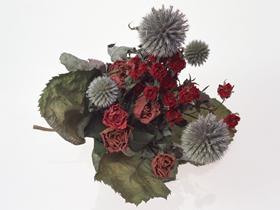 玫瑰干花图片