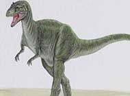 精美手繪恐龍唯美圖片