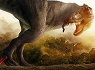 身形巨大的恐龍圖片大全
