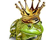 小青蛙戴着皇冠头饰图片