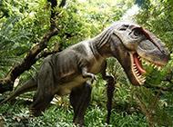 牙齒鋒利的霸王恐龍圖片