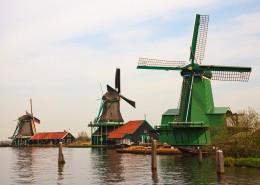 高大的荷兰风车图片_15张
