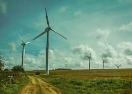 高大年夜的风力发电机图片_14张