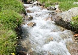 湍急的溪流圖片_12張