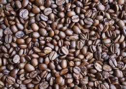 顆粒飽滿的咖啡豆圖片_15張