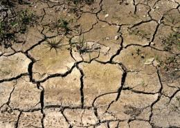 干旱的土地图片_14张