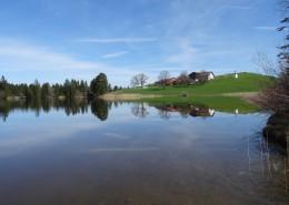 平静的湖面风景图片_13张
