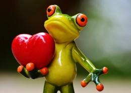 有趣的青蛙摆件图片_15张