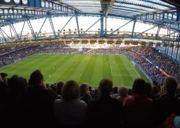 觀眾爆滿的體育場圖片_12張