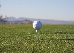 小小的白色高尔夫球图片_10张