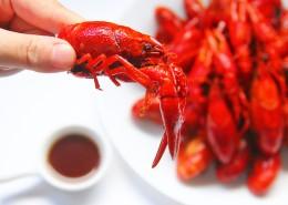 美味好吃的麻辣小龙虾图片_10张