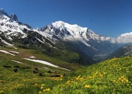 瑞士阿爾卑斯山風景圖片_16張