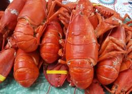 鲜美浓香的小龙虾图片_13张