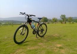 一輛自行車圖片_12張