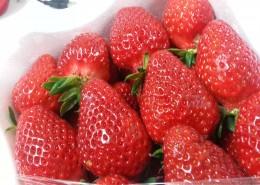 颜色鲜红的草莓图片_13张