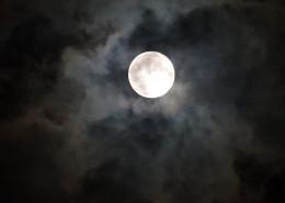皎潔的月亮圖片_14張