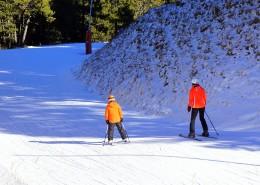 户外滑雪运动图片_14张