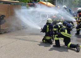 大胆的消防员图片_12张
