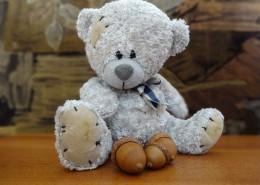 毛绒绒的玩具熊图片_14张