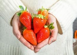 新鲜可口的草莓图片_15张