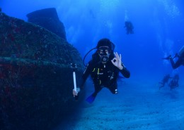 正在潛水的人圖片_13張