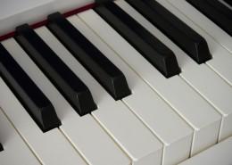 钢琴的黑白键盘图片_15张