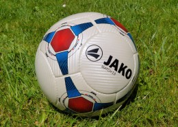 各種各樣的足球圖片_15張