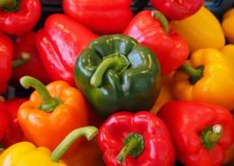 日常食用的柿子椒图片_15张