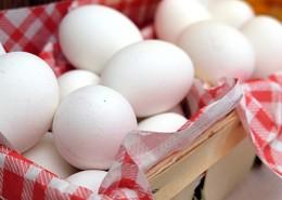 新鮮的雞蛋圖片_15張