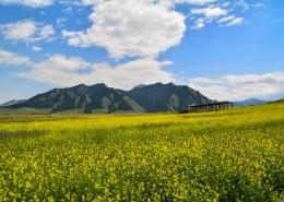 新疆烏魯木齊南山雪嶺鷹溝自然風景圖片_13張