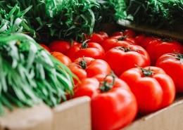 新鲜美味的番茄图片_10张