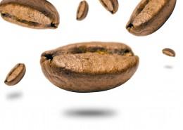 白色背景的咖啡豆图片_10张
