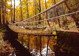 唯美的秋天色彩图片_11张