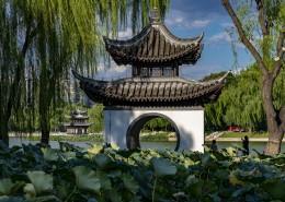 北京陶然亭公園風景圖片_9張
