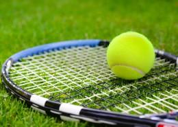 弹性极好的网球图片_16张