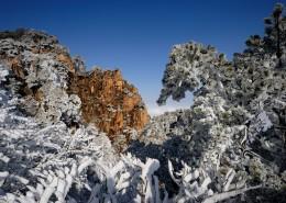 唯美安徽黃山自然風景圖片_13張