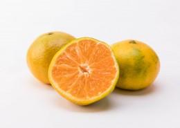 营养丰富富含维生素A的橘子图片_10张