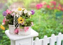 装有鲜花的花篮图片_12张