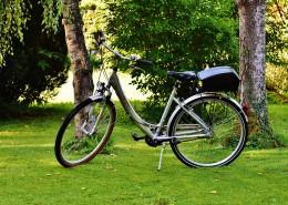 草地上的自行车图片_12张