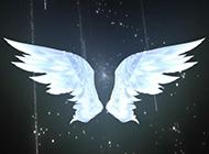 翅膀的ppt炫酷荧光背景图片