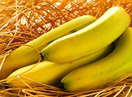 香蕉水果之王簡約精美高清壁紙