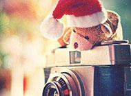小熊与相机复古怀旧风格图片背景素材