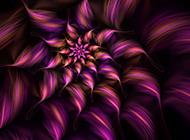 唯美梦幻花朵高清宽屏壁纸