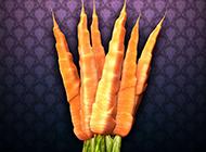 活力蔬果胡萝卜个性高清壁纸