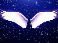 帶翅膀夢幻唯美背景圖