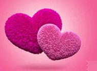 心形粉色毛绒挂饰背景图片